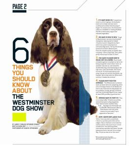 6thingswestminsterdogshow