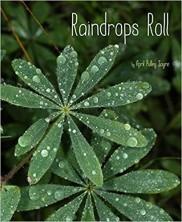 Raindrops rolls.jpg